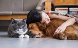 A complete guide to pet insurance