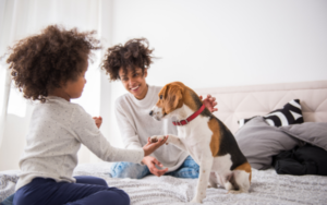 the best time limited pet insurance