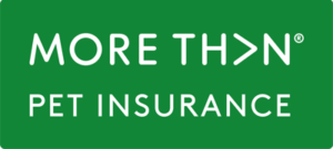 more than pet insurance review