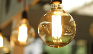 People's Energy and Utility Point cease trading: What to do next